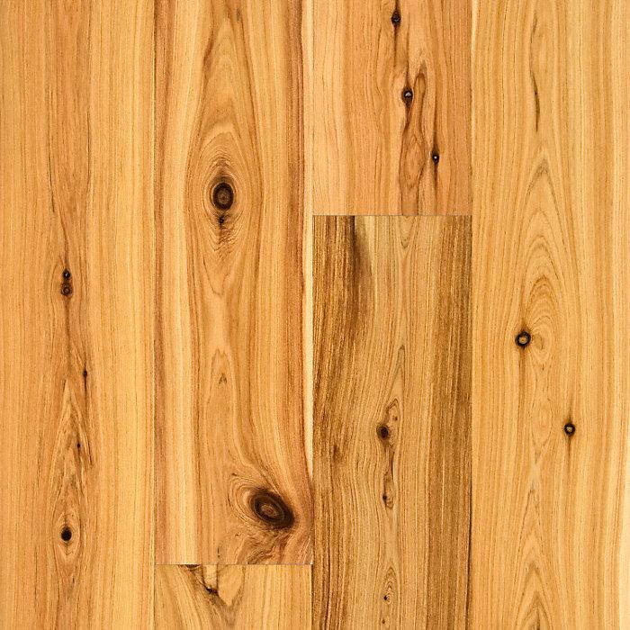 Natural Australian Cypress